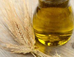 Миниатюра к статье Масло зародышей пшеницы — секрет длинных и густых ресниц
